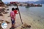GriechenlandWeb.de Pisaetos - Ithaki - Ithaca - Foto 099 - Foto GriechenlandWeb.de