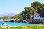 GriechenlandWeb.de Lassi - Kefalonia - Foto 12 - Foto GriechenlandWeb.de