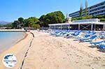 GriechenlandWeb.de Lassi beach hotel Mediterranee Lassi - Kefalonia - Foto 15 - Foto GriechenlandWeb.de