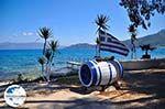 GriechenlandWeb.de Karavomilos Sami - Kefalonia - Foto 211 - Foto GriechenlandWeb.de