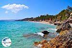 GriechenlandWeb Makris Gialos Lassi - Kefalonia - Foto 283 - Foto GriechenlandWeb.de