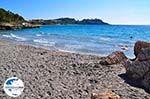 GriechenlandWeb Strand Gradakia in Lassi - Kefalonia - Foto 307 - Foto GriechenlandWeb.de