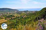GriechenlandWeb.de Katelios und Katelios Bucht - Kefalonia - Foto 366 - Foto GriechenlandWeb.de