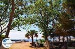 GriechenlandWeb.de Katelios und Katelios Bucht - Kefalonia - Foto 378 - Foto GriechenlandWeb.de