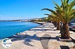 GriechenlandWeb.de Argostoli - Kefalonia - Foto 494 - Foto GriechenlandWeb.de