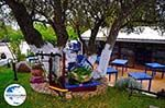 Lassi - Kefalonia - Foto 567 - Foto GriechenlandWeb.de