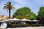 GriechenlandWeb.de Argostoli - Kefalonia - Foto 577 - Foto GriechenlandWeb.de