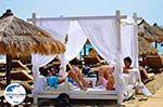 Makris Gialos Lassi - Kefalonia - Foto 589 - Foto GriechenlandWeb.de
