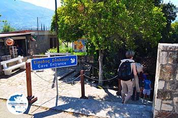 Drogarati Höhle - Kefalonia - Foto 164 - Foto GriechenlandWeb.de