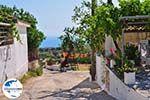 GriechenlandWeb.de Maries Zakynthos | Griechenland | GriechenlandWeb.de nr3 - Foto GriechenlandWeb.de
