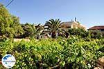 GriechenlandWeb.de Alykanas Zakynthos | Griechenland | GriechenlandWeb.de foto 3 - Foto GriechenlandWeb.de