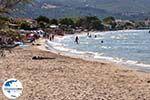GriechenlandWeb.de Alykes Zakynthos | Griechenland | GriechenlandWeb.de foto 4 - Foto GriechenlandWeb.de