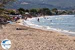 GriechenlandWeb Alykes Zakynthos | Griechenland | GriechenlandWeb.de foto 4 - Foto GriechenlandWeb.de
