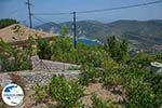 GriechenlandWeb.de Exogi Ithaka - GriechenlandWeb.de photo 7 - Foto GriechenlandWeb.de