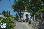 GriechenlandWeb.de Exogi Ithaka - GriechenlandWeb.de photo 11 - Foto GriechenlandWeb.de