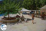 GriechenlandWeb.de Polis Ithaka - GriechenlandWeb.de photo 12 - Foto GriechenlandWeb.de