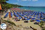 GriechenlandWeb.de Lassi Kefalonia - GriechenlandWeb.de photo 10 - Foto GriechenlandWeb.de