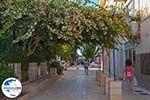 GriechenlandWeb.de Lixouri Kefalonia - GriechenlandWeb.de photo 27 - Foto