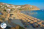 GriechenlandWeb Elia beach Mykonos - Kykladen -  Foto 15 - Foto GriechelandWeb.de
