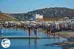 GriechenlandWeb.de Panormos Mykonos - Kykladen -  Foto 14 - Foto GriechelandWeb.de
