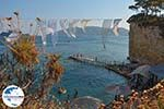 GriechenlandWeb.de Agios Sostis Cameo Zakynthos - Ionische Inseln -  Foto 13 - Foto GriechenlandWeb.de