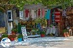 GriechenlandWeb.de Anafonitria Zakynthos - Ionische Inseln -  Foto 13 - Foto GriechenlandWeb.de