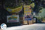 GriechenlandWeb.de Banana beach Vassilikos Zakynthos - Ionische Inseln -  Foto 4 - Foto GriechenlandWeb.de