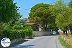 GriechenlandWeb.de Lithakia Zakynthos - Ionische Inseln -  Foto 2 - Foto GriechenlandWeb.de