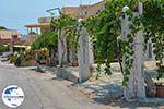 GriechenlandWeb.de Maries Zakynthos - Ionische Inseln -  Foto 11 - Foto GriechenlandWeb.de