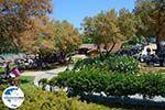 GriechenlandWeb.de Porto Azuro (Porto Zorro) Vassilikos Zakynthos - Ionische Inseln -  Foto 6 - Foto GriechenlandWeb.de
