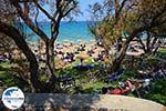 GriechenlandWeb.de Porto Azuro (Porto Zorro) Vassilikos Zakynthos - Ionische Inseln -  Foto 8 - Foto GriechenlandWeb.de