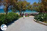 GriechenlandWeb.de Porto Azuro (Porto Zorro) Vassilikos Zakynthos - Ionische Inseln -  Foto 10 - Foto GriechenlandWeb.de