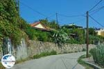 GriechenlandWeb.de Tragaki Zakynthos - Ionische Inseln -  Foto 3 - Foto GriechenlandWeb.de