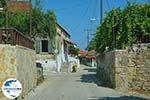 GriechenlandWeb.de Tragaki Zakynthos - Ionische Inseln -  Foto 6 - Foto GriechenlandWeb.de