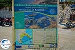 GriechenlandWeb.de Kalamaki Zakynthos - Ionische Inseln -  Foto 12 - Foto GriechenlandWeb.de